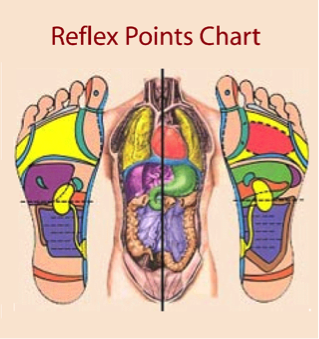 reflexology thai